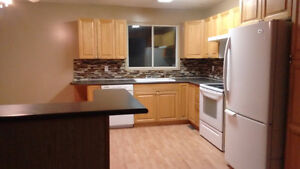House for rent with separate entrance to basement SouthEast