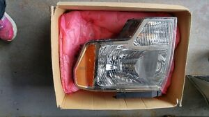 Headlight 2009-2014 F-150