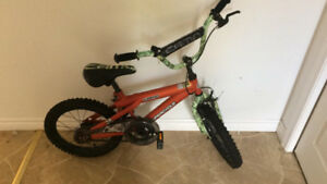 Kids Camo Bike size 16