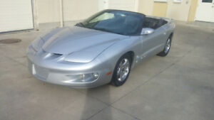 2002 Pontiac Firebird Convertible - Clean CarFax Report