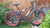 "Ironhorse Dolomite - Fat Tire bike - ~19"" frame"