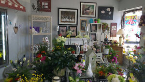 NEW PRICE For Flower & Gift Shop Kitchener / Waterloo Kitchener Area image 2