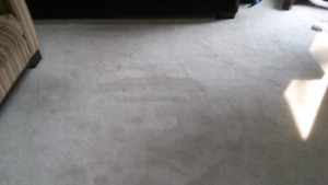 Quality Used Carpet