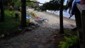 Sandy Beach Cottage in Muskoka - Last Minute Opening!!! July 22