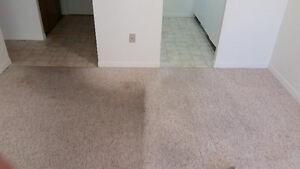 Professional Steam Carpet Cleaning      519.701.0549 London Ontario image 8