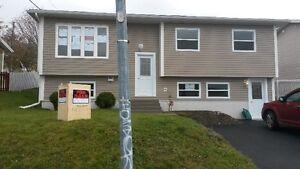 2 bdrm above ground bsmt apt - Available NOW