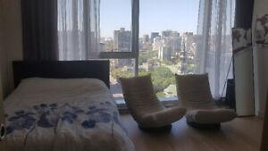 Studio de luxe - Centre ville - 160$ par nuit