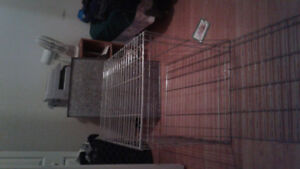 Grosse Cage a chien