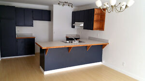 STUDENT - 4BR / 2 Bathroom apartment in the Plateau