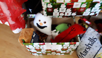 Various prices - new dog toys - Woodbine/Danforth