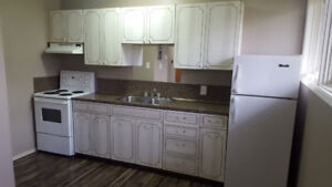Large 1 Bedroom Apartment Available