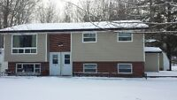 Basement unit on quiet street in Coldbrook. Rental duplex