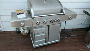 Stainless Steel Natural Gas BBQ.