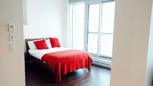 Stunning Studio in Downtown inc all util (T) : Avail Mar 1st