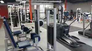 Titan Fitness & Nutrition - What's YOUR Reason? Kitchener / Waterloo Kitchener Area image 10