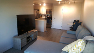 Beautiful Pet Friendly Apartment to sub lease!