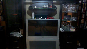 Entertainment Unit / Bar