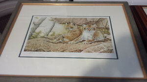Framed Signed Numbered Wildlife Prints 215.00 for everything Obo
