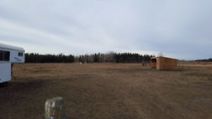 Private Horse Boarding 15 acres 10 minutes east of Calgary
