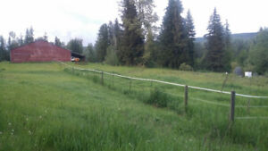 Pasture and paddock boarding Lumby