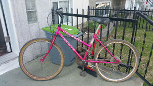 For sale/a vendre very good looking triumph Ravine mountain bike