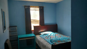 Nice Room by Canyon Meadows LRT for Male's short term rental