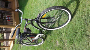 Cruiser bike sturgeon falls