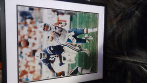Signed Dan Marino picture