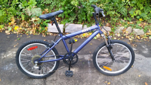 Blue Rave Raleigh BMX style Bike