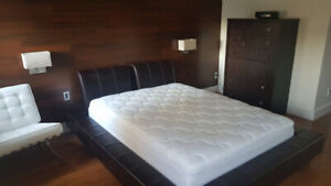 Room for rent downtown King/Bathurst w/private ensuite bathroom