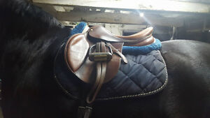 Tons of Horse Tack, Equipment, Boots, Saddle, & Riding Apparel