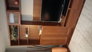 Big, Very Practical Entertainment Unit and Coffee Table Kitchener / Waterloo Kitchener Area image 5
