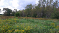 Calling Hunters and Builders! 11.76 Acre lot for sale!