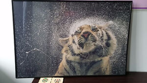 art picture of tiger