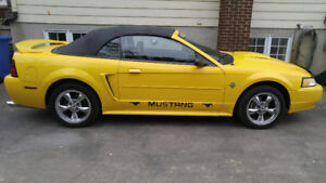 Ford mustang 99 modèle 30 anniversaire