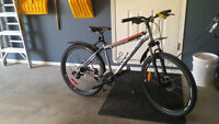 Rocky Mountain Edge mountain bike