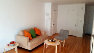 Beautiful 2 bedrooms apt all furnished downtown Montreal