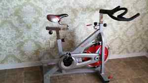 Sunny spinning style exercise bike