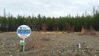 Beautiful Forest Crowne lot with MOUNTAIN VIEWS