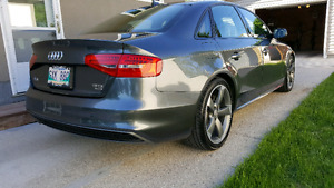2014 Audi A4 Progressive S-Line W/Black Optic Pkg