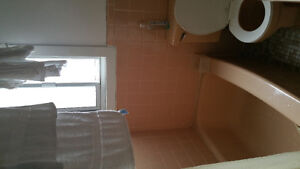 4.5 Montreal West adjacent - 670$ heating included