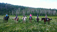 Summer Riding Camp @ Hillsview Stables