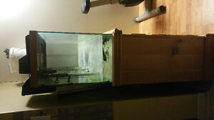 40 gallons tank set for sale