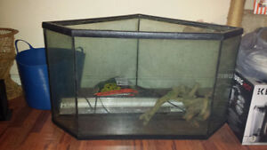 72 Gallon Diamond shaped aquarium with light and stand