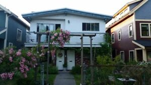 Female wanted to rent fully furnished one bedroom