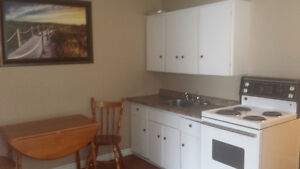 BACHELOR APARTMENT IN MT PEARL