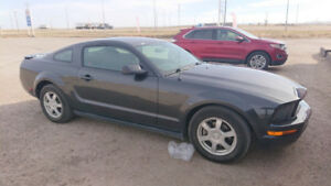 2007 Ford Mustang Coupe (2 door) IN SK