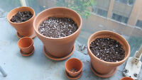 Clay pots different sizes all for $40 with organic soil