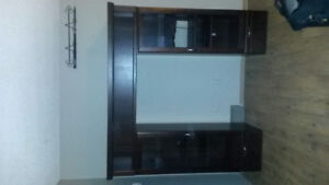 Shelving unit. With light up display shelving.