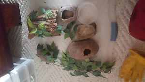 Leopard Gecko and his home for sale